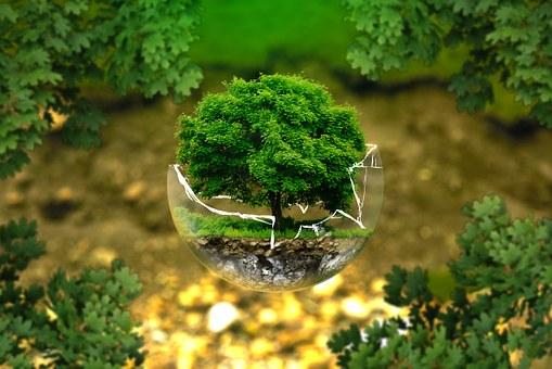 ing ambiental